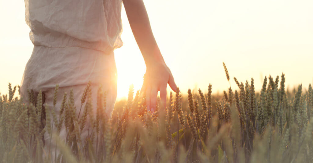 Finding Peace in God | 4 Ways to Experience Peace in Spite of Circumstances